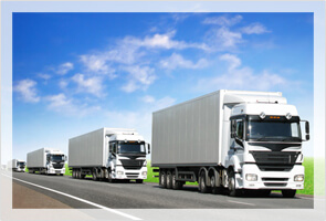 Trux Vehicle of list for logistics, transportation and Truck